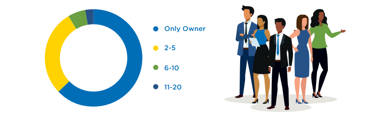 pre-startups and startups survey of employee count: Only Owner, 2-5, 6-10, 11-20 infographic