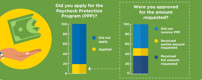 pre-startups and startups survey of startups who applied for PPP paycheck protection program) or requested money/loan infographic